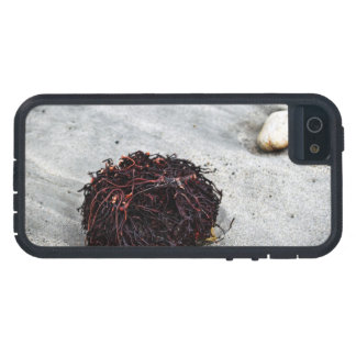 Seaweed Roots Case For The iPhone 5