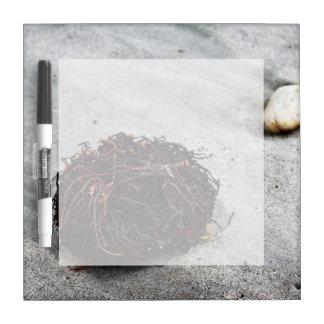 Seaweed Roots Dry Erase Board