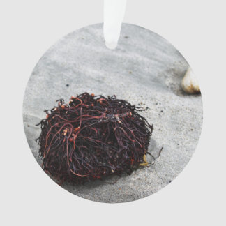 Seaweed Roots Ornament