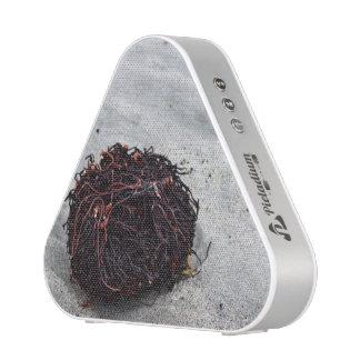 Seaweed Roots Speaker