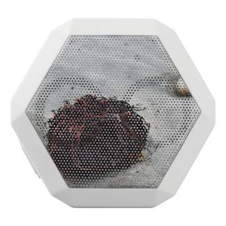 Seaweed Roots White Bluetooth Speaker