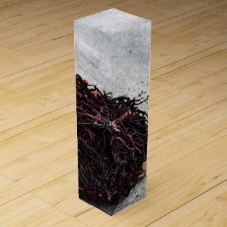 Seaweed Roots Wine Gift Box