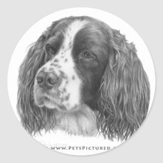 Sebastian, English Springer Spaniel Classic Round Sticker