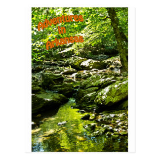Secluded Stream Postcard