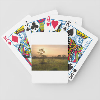Second Dawn in Fakahatchee Strand Bicycle Playing Cards