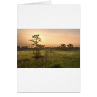 Second Dawn in Fakahatchee Strand Card