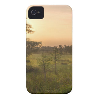 Second Dawn in Fakahatchee Strand iPhone 4 Case