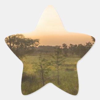 Second Dawn in Fakahatchee Strand Star Sticker