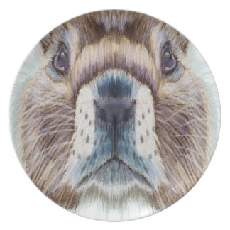Second February - Marmot Day - Appreciation Day Plate