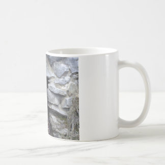 Secret Cave Coffee Mugs