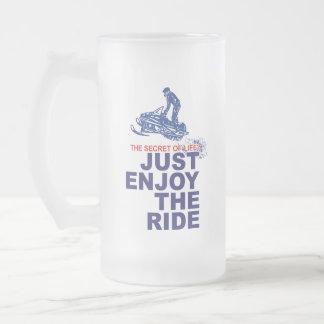 Secret-Of-Life Frosted Glass Beer Mug