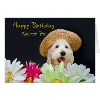 Secret Pal - Birthday Greeting Card