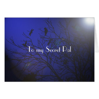 Secret Pal thoughts Greeting Card