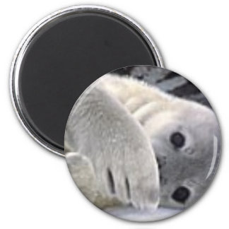 Secretive Seal 2 Inch Round Magnet