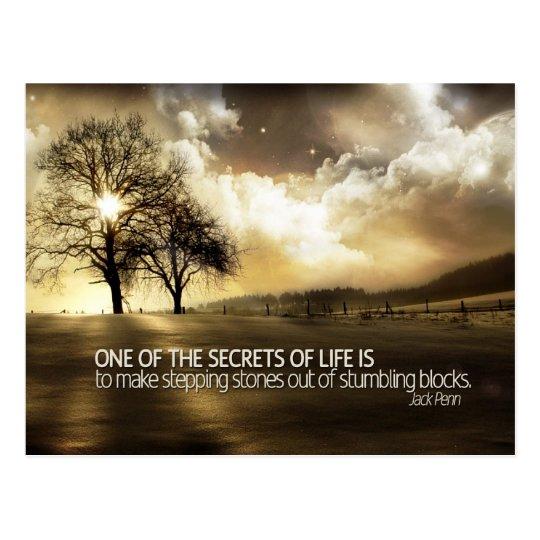 Secrets Of Life Postcard