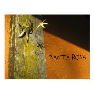 Secteur d'art de Santa Rosa Carte Postale