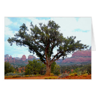 Sedona Solitude Card