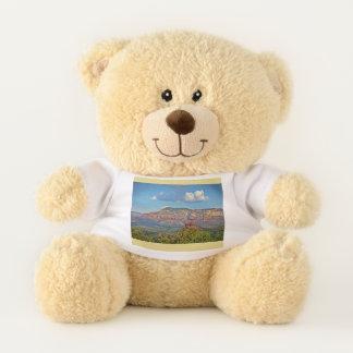 SedonaTeddy Bear