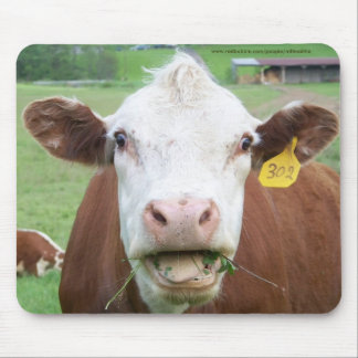 See-Food Cow Mousepad