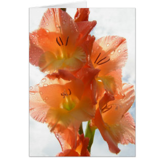 See-through Gladiolas Card