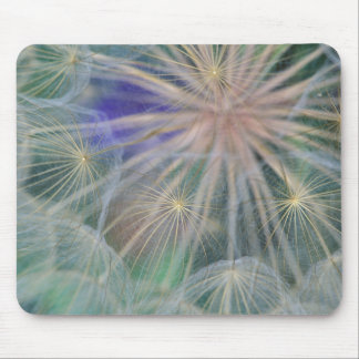 Seed Head Design | Gennesse, Idaho Mouse Pad