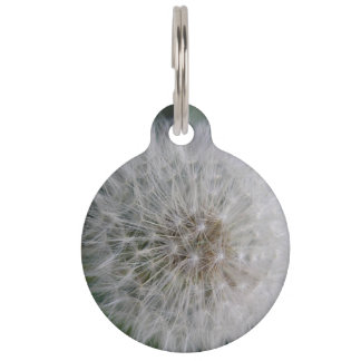 Seeding Dandelion Flower Custom Pet Tag