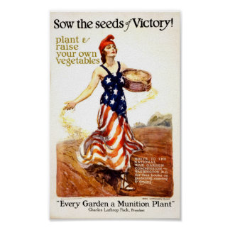 Seeds of Victory Poster