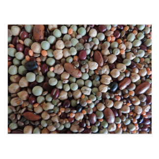 Seeds photo, Colorful Mixed Beans Postcard