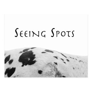 Seeing Spots Postcard