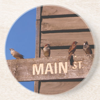 Seeking Direction Coaster