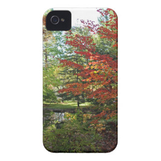 Seeking Solitude Case-Mate iPhone 4 Case