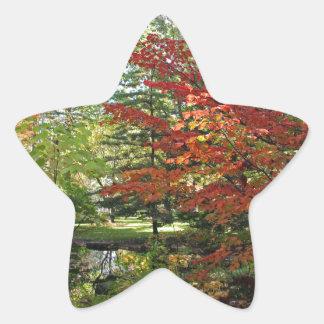 Seeking Solitude Star Sticker