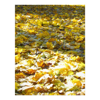 Selective focus on the leaves with a blurred back letterhead