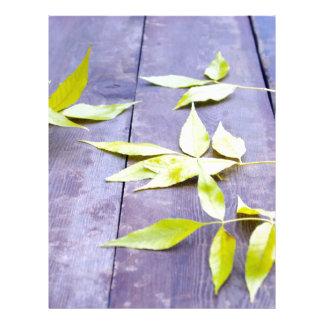 Selective focus on the yellow autumn leaves ash custom letterhead
