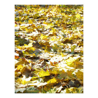 Selective focus on the yellow fallen autumn maple personalized letterhead