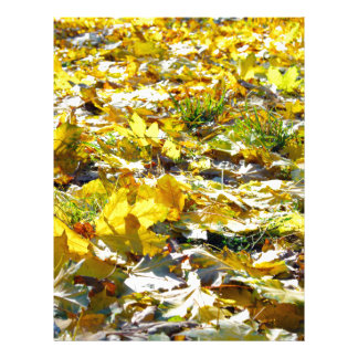 Selective focus on the yellow maple leaves on the personalized letterhead