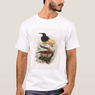 Seleucides alba - Twelve Wire Bird Of Paradise T-Shirt