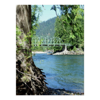 Selway River Poster