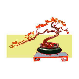 Semi Cascade Bonsai Fall Colours Graphic Image Photo Sculptures