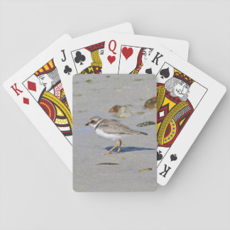Semipalmated plover playing cards