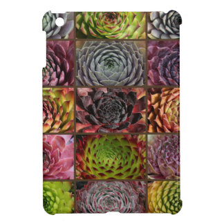 Sempervivum - Houseleek - Hauswurz - Collage iPad Mini Case