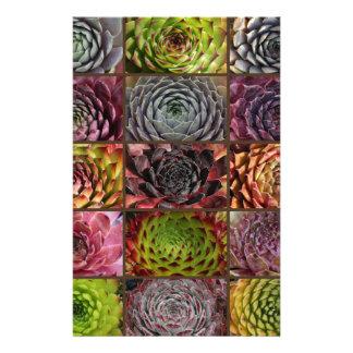 Sempervivum - Houseleek - Hauswurz - Collage Stationery