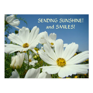 SENDING SUNSHINE & Smiles! Postcard Valentines