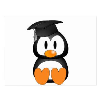 Senior Penguin Postcard