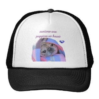 senior pug trucker hats