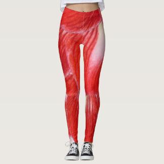 Sensual Curvy Red Amaryllis Yoga Workout Jogging Leggings