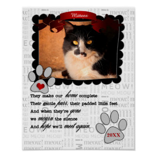 Sentimental Pet Memorial with Cat's Name and Photo Poster