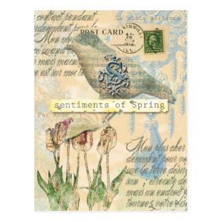 Sentiments of spring postcard