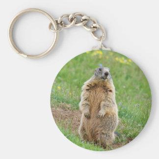 Sentinel marmot basic round button keychain