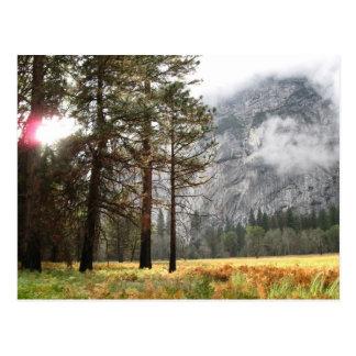 Sentinel Meadow Postcard